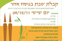 Web Flyer for Conservative Pardes Chana-Karkur Minyan