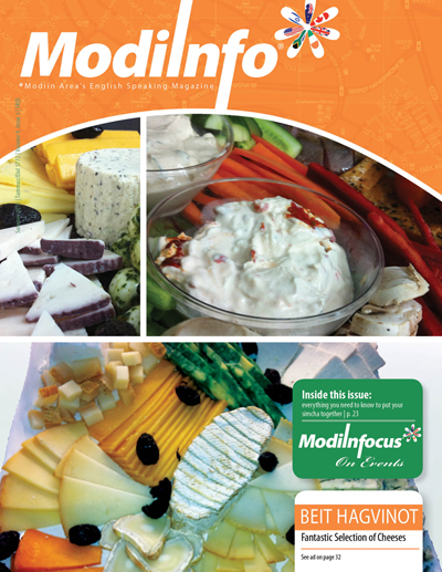 Summer ModiInfo Cover, Dror Designs